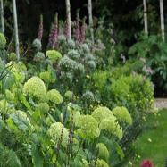 Amanda Broughton Garden Design Image 10