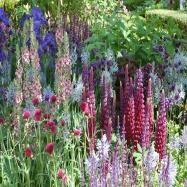 Andrew Jordan Garden Design Image 7
