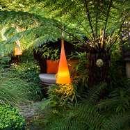 Aralia Garden Design Image 1