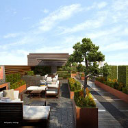 Aralia Garden Design Image 4