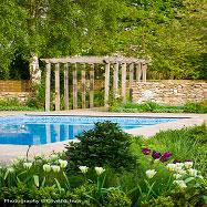Aralia Garden Design Image 10