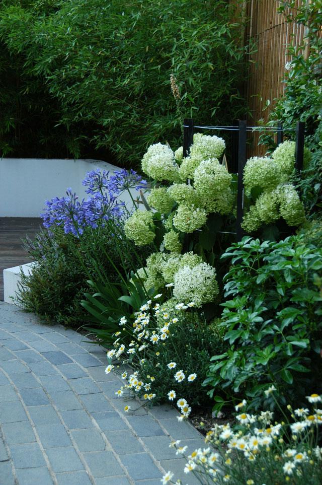 Breeze Garden Design In London