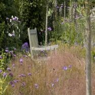 Catherine Thomas Landscape & Garden Design Ltd Image 2
