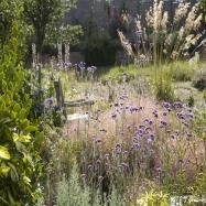 Catherine Thomas Landscape & Garden Design Ltd Image 3
