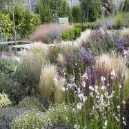 Catherine Thomas Landscape & Garden Design Ltd Image 4