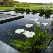 Catherine Thomas Landscape & Garden Design Ltd Image 20
