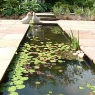 Cheryl Cummings Garden Design Image 4