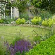 Finch Garden Design Image 1