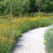 Garden Inspirations Image 1