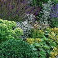 Inspired Garden Designs 3