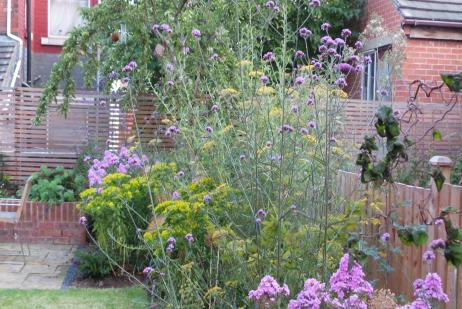 Mary Swan Gardens