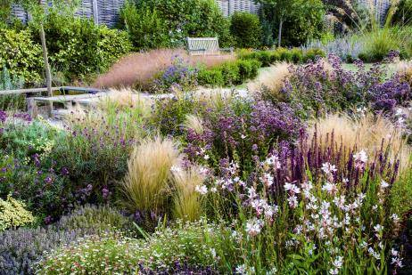 Catherine Thomas Landscape & Garden Design Ltd