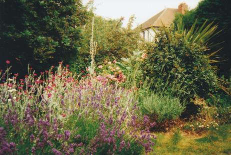 Bellissima Garden Design