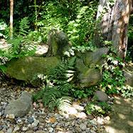 Matt Haddon Gardens Image 5