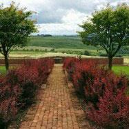 Michael Lowe Gardening Services Img 2