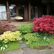 Miriam Gopaul Garden Design Image 3