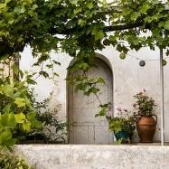 Nina's Garden Image 3