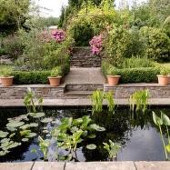 Nina's Garden Image 5