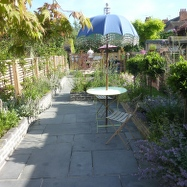 Olive Tree Garden Design Image 2