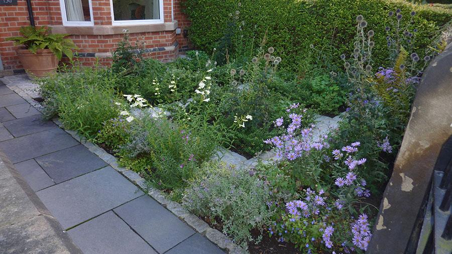 Olive Tree Garden Design in Nottingham   Garden Design