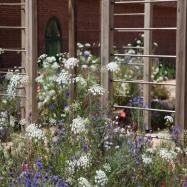Philip Knight Gardens Image 2