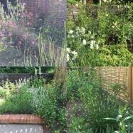 Philip Knight Gardens Image 8