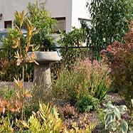 Rachel Bailey Garden Design Ltd Image 1