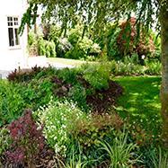Rachel Bailey Garden Design Ltd Image 3