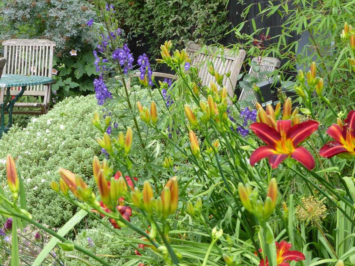 Sue Bell Garden Design 9 Part 58