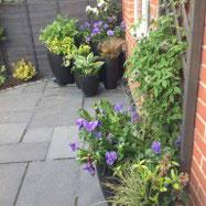 Tapestry Garden Design Image 4