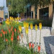 The Garden Co Image 2